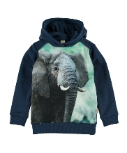 Afbeelding Sweater